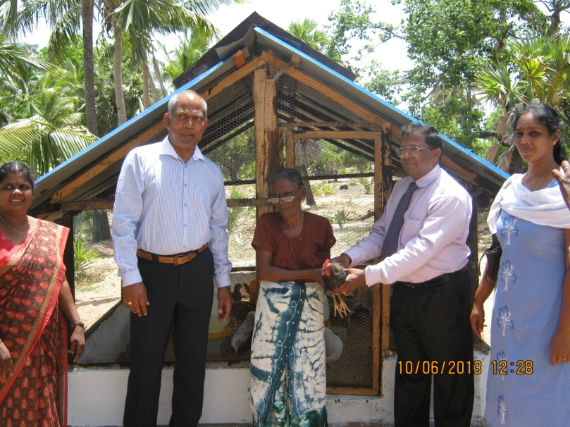 Livelihood assistance to a family (Mrs Parameswary) in Ambalavan Pokkanai (Parameswary Amma was taken to Mannar from Mullaithivu by ARR for a cataract surgery on 02 June 2013)
